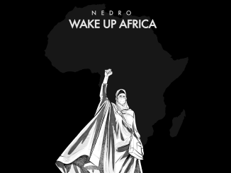 Download: Nedro - Wake Up Africa Mp3