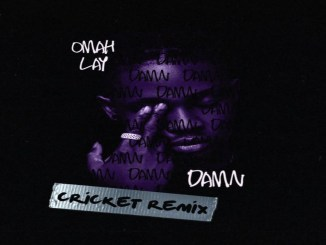 Download: Omah Lay – Damn Cricket Remix Mp3
