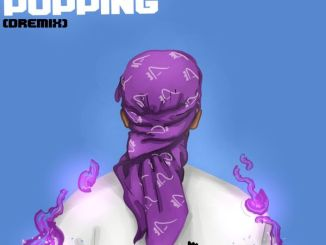 Download mp3: Dremo – Whats Popping