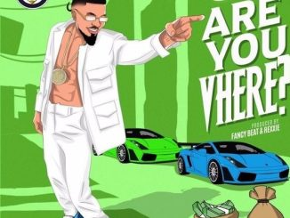 Download mp3: Skiibii – Are You Vhere