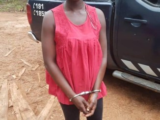 Ghanaian hairdresser allegedly stabs boyfriend to death over soup days after she accused him of cheating on her