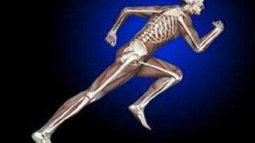 foods-build-healthy-strong-bones