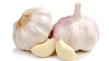 potential-side-effects-raw-garlic