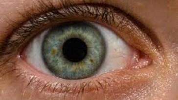 8-basic-activities-benefit-eye
