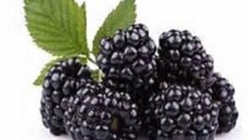 8-amazing-benefits-eating-blackberry