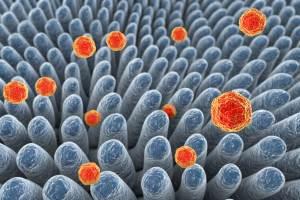 key-facts-hepatitis