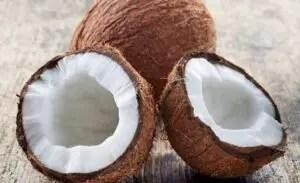Nutritional Properties of Coconut