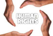 Human Rights Organization in Nigeria