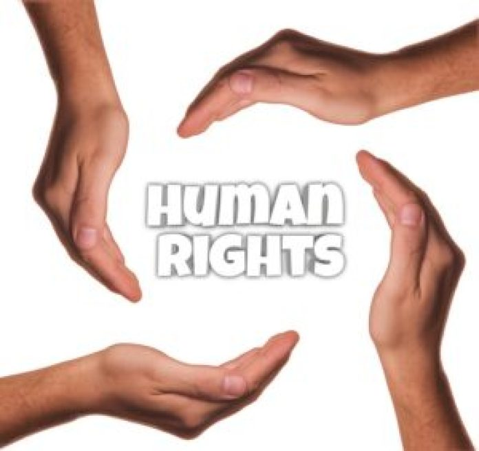Human Rights Organization in Nigeria
