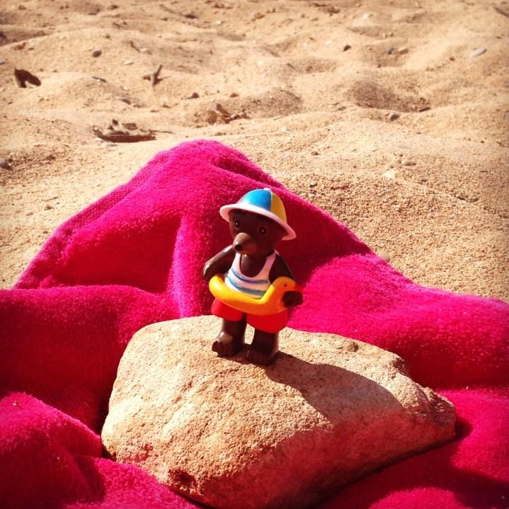 Petit Ours Brun se dore la pillule à la plage