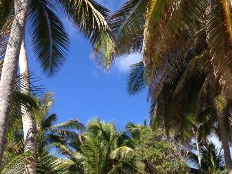 Martinique, Anse Saint-Michel, Vacances en Martinique, en famille avec enfants, Blog 9 MOI(S) d'envies à Nantes, mode femme, mode maternité, grossesse, décoration, DIY, couture, cuisine, journal, lifestyle...