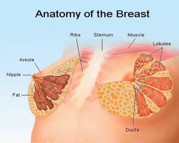 أسباب التهاب الثدي وطرق العلاج
