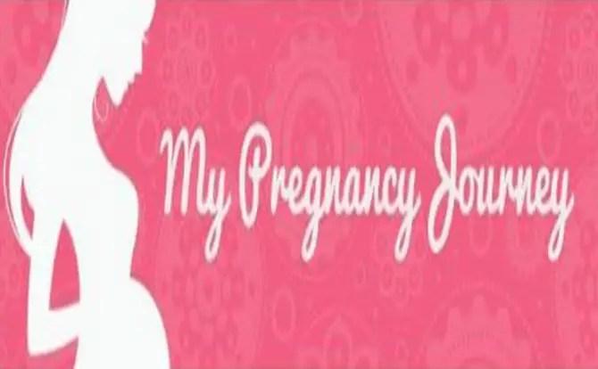 ما هي تفاصيل رحلة الحمل وكيفية حدوثها؟
