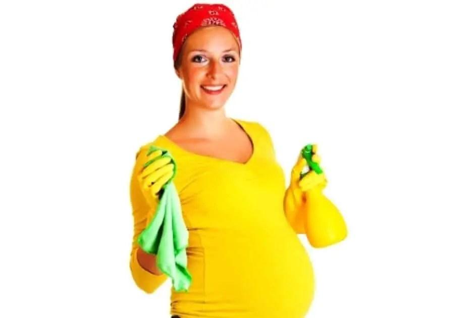 هل استخدام مبيد الحشرات والمُنظفات آمن أثناء الحمل والولادة؟