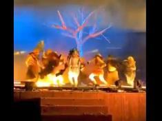 Three performers stabbed on stage in King Abdullah's park Saudi Arabia (Video)