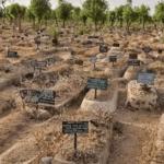 Mass deaths in Kano