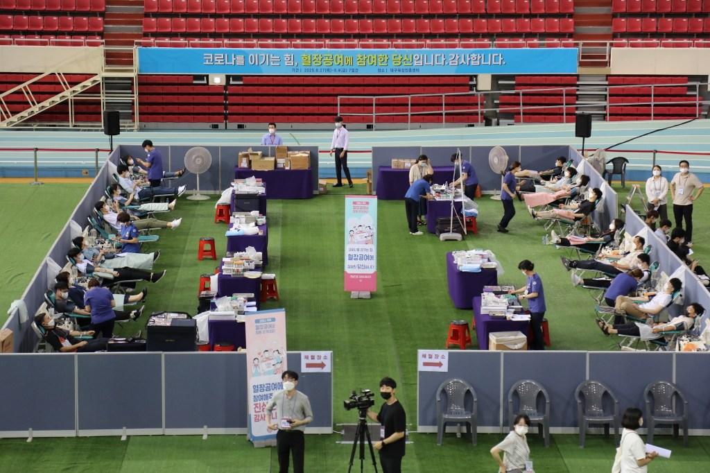 donating plasma in Daegu (4)