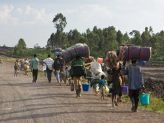 More displacements as residents flee town in Borno