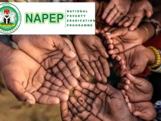NIGERIAN FEDERAL GOVERNMENT POVERTY ALLEVIATION PROGRAMME