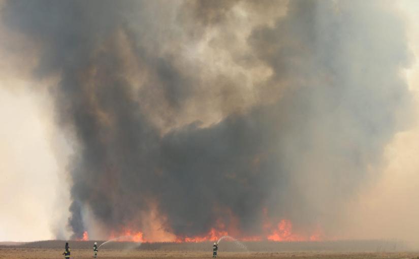 Pomoc w walce z pożarem w Biebrzańskim Parku Narodowym (25.04.2020)