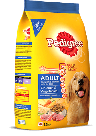 TOP SELLING BEST PET PRODUCTS IN 2021