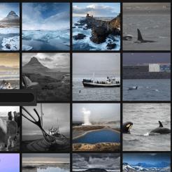 Screen Shot 2013-02-28 at 1.49.18 PM