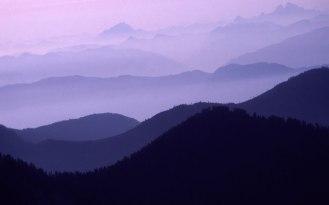 bg_weather_fog_night