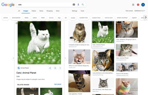 google-images-ab-test-redesign