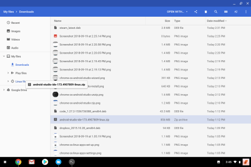 Chrome OS Linux Files Android Studio