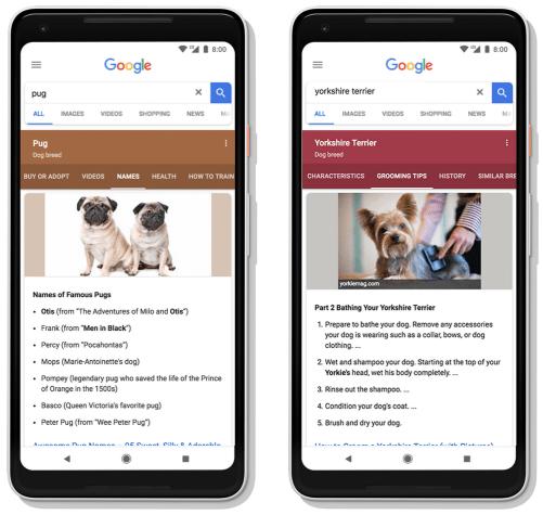 Google Search Subtopics