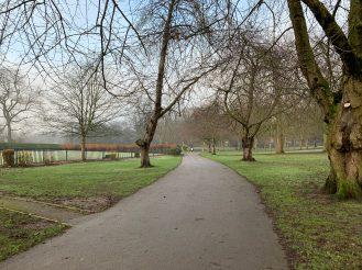 iPhone XR - Park pathway