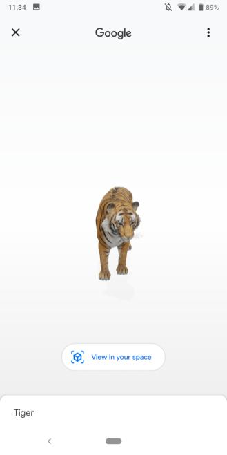 google-search-ar-animals-1