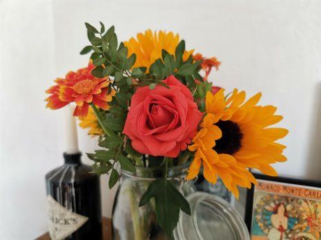 sample photo flowers