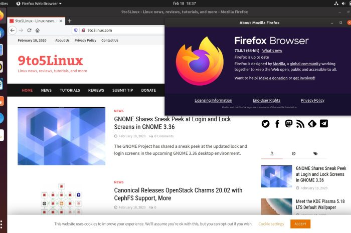 Firefox 73.0.1 Fixes Linux Crashes When Playing Encrypted Content