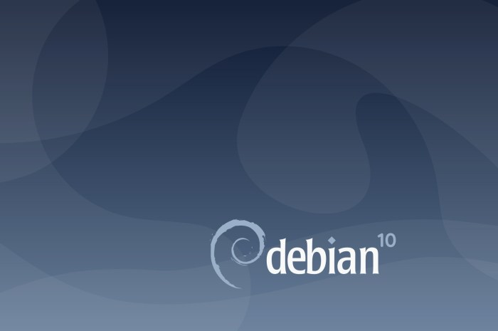 "Debian GNU/Linux 10.3 ""Buster"" Images Now Available for Download"