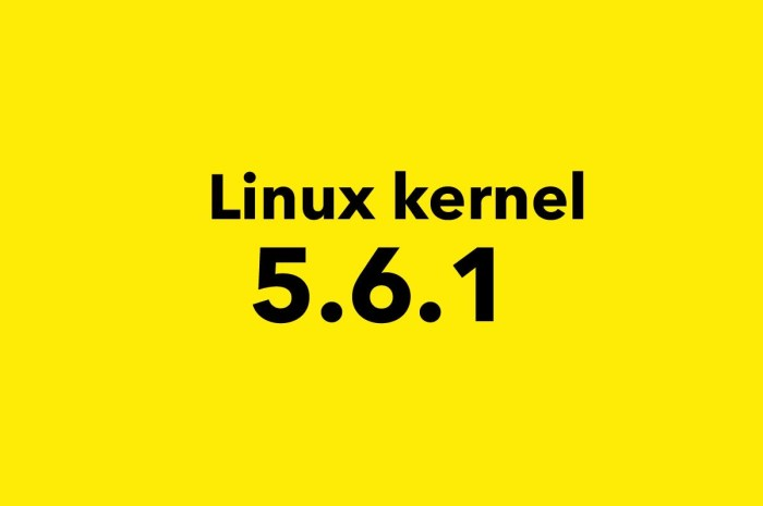 Linux 5.6 Gets First Point Release, It's Now Ready for Mass Adoption