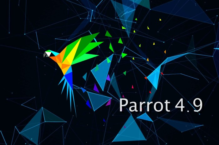 Parrot 4.9 Security OS Arrives with Linux Kernel 5.5, New Installer
