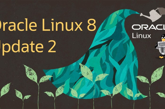 Oracle Linux 8.2 Released, It's Based on Red Hat Enterprise Linux 8.2