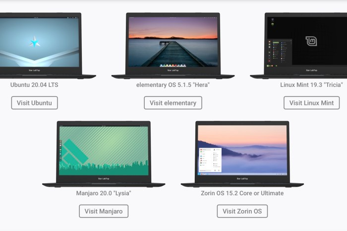 Star Labs Now Offers elementary OS as an OS Choice for Its Linux Laptops