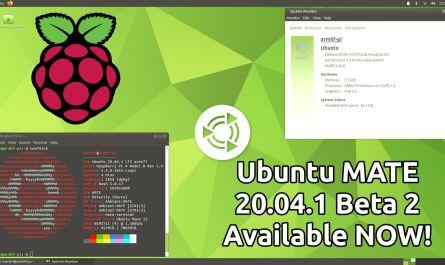 Ubuntu MATE 20.04.1