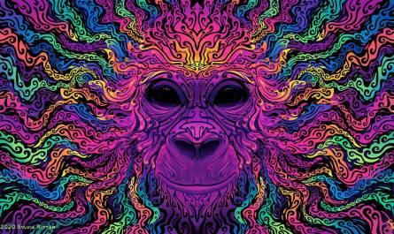 Groovy Gorilla artwork