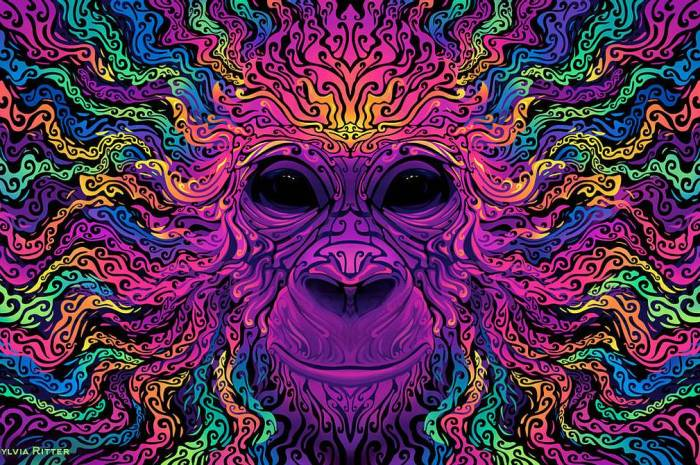 "Ubuntu 20.10 ""Groovy Gorilla"" Artwork by Sylvia Ritter Looks Astonishing, Made with Krita"