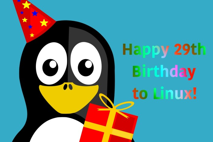 Happy 29th Birthday, Linux!