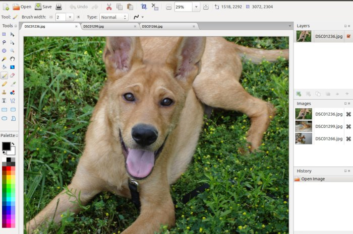 Pinta Open-Source Image Editing and Drawing App Sees New Major Release After 5 Years
