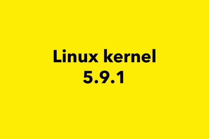 "Linux Kernel 5.9 Gets First Point Release, It's Now Marked as ""Stable"""