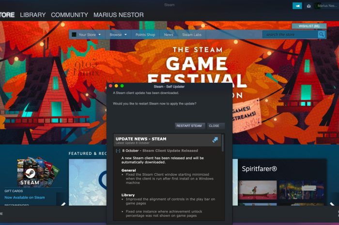 New Steam Client Update Brings Linux Fixes, Other Improvements