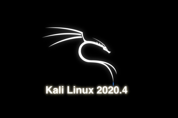 Kali Linux 2020.4 Ethical Hacking Distro Is Out Now with ZSH as Default Shell, Linux 5.9
