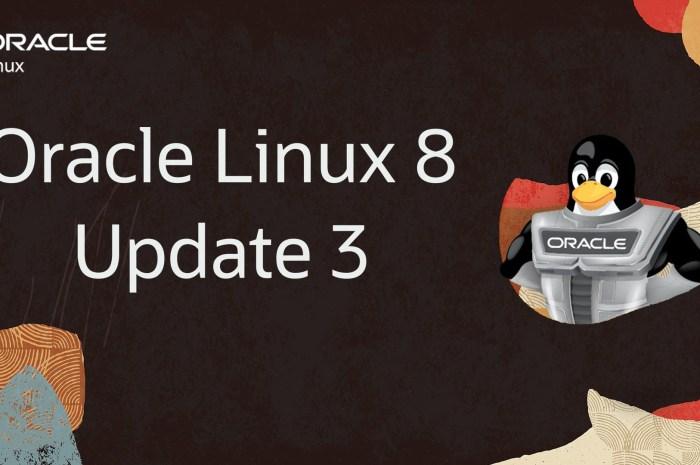 Oracle Linux 8.3 Is Out and It Brings a Much Improved Installer, SELinux Updates