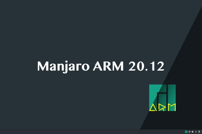 Manjaro ARM 20.12 Released with KDE Plasma 5.20, New App for Flashing Images
