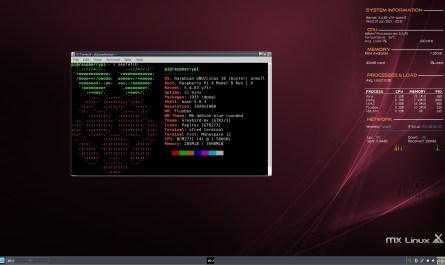 MX Linux Fluxbox Raspberry